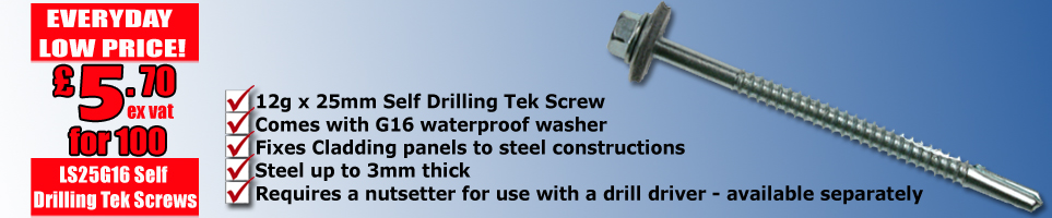Self drilling 25mm Tek screw with G16 galvanised washer